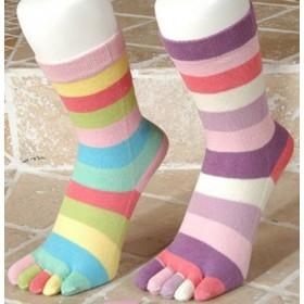 Daren Parmaklı Bayan Soket Çorap
